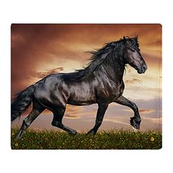 CafePress - Beautiful Black Horse - Soft Fleece Throw Blanke