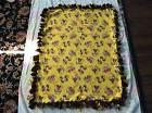 2 layered Hand tied fleece blanket monkeys for a baby, cat,