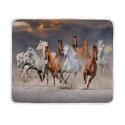 ALAZA Wildlife Horse Herd Desert Dust Sunset Sky Plush Throw