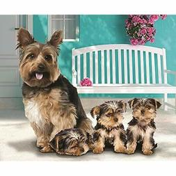 """Yorkie Throws And Puppies Fleece Blanket 50"""" X 60"""" Home Kitc"""